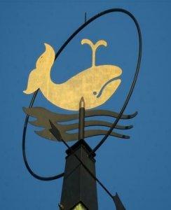 Logo De Walvis