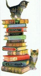 Logo Niki Bookshop