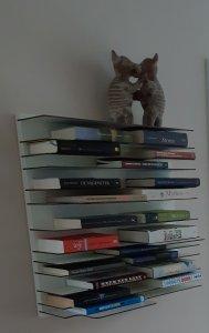 Afbeelding van Myriams boekenhoekje