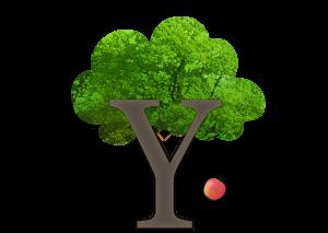 Logo Mulders Boekenkist
