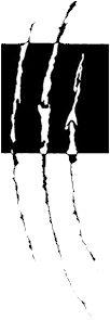 Logo Papieren Tijger