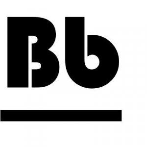 Afbeelding van BorusBoek