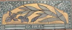 Logo De Iris