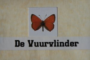Logo De Vuurvlinder