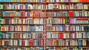 Logo Librariana